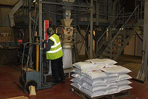 One of our plant operators packing seeds