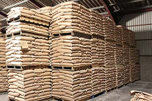 Maros Peas packed for export